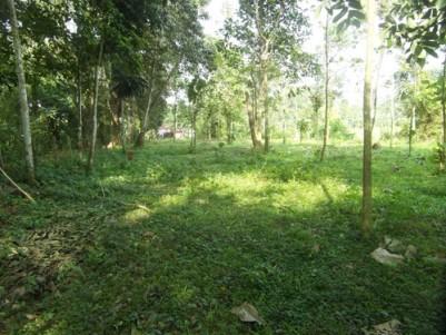 36 Cents of Land for sale at Chuttuvelil, Perumbayikkad, Kottayam.