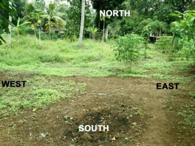 113 Cent Land for sale at Pullad,Pathanamthitta.