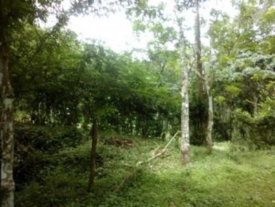 3.5 Acres of Land for sale at Rajakumary,Munnar,Idukki.