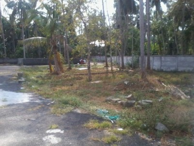 8.75 Cents of  land for sale  near Puthukkad,Thrissur.