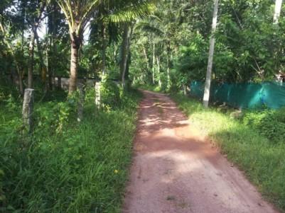 Land at Bharanikvoo, Kattanam near to bharanikavoo temple