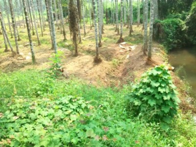 Beautiful house plots  for sale at Manjeri,Malappuram.