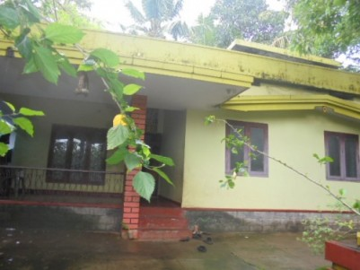 12 Cents of land with 1600 Sqft 3 BHK house for sale  at Chala,Kannur.