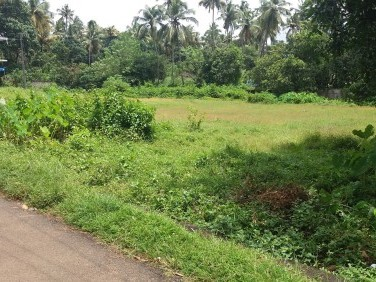 29 Cents of land near Thalore
