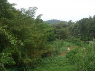 15 Acre multi crops land for sale at Sulthan Bathery,Wayanad..