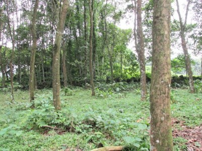 40 Cents of Land for sale at Pala Town,Kottayam.