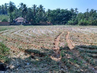 5 Acre land for sale at Ottapalam,Palakkad.
