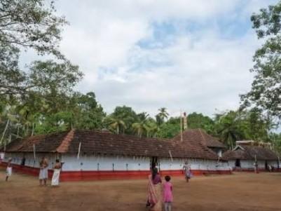 11.1/4 cent plot for sale at perinjanam near NH 17