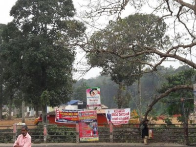 50 CENTS LAND FOR SALE AT THE HEART OF PALAI TOWN