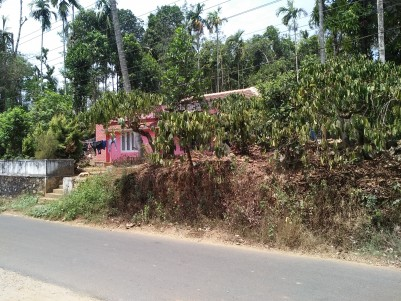 Cent 2.5 lakh. 1200 Sq Ft House for sale at Pariyaram, muttil, Wayanad