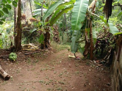 Commercial and Agricultural land for sale at Alakode,Kannur