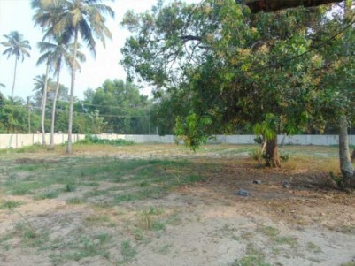 1.20 Acre  Land with Lake Access for sale Near Vembanad Lake, Thanneermukkom, Alappuzha.