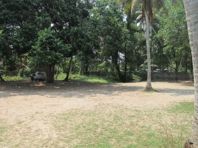 Residential land for sale at Kumbalam, Ernakulam