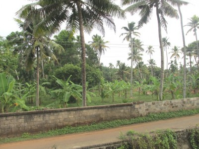 Water frontage land for sale at Kaduthuruthy Town, Kottayam