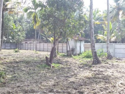32 Cents of Residential land with old house for sale at Karunagappally,  Kollam