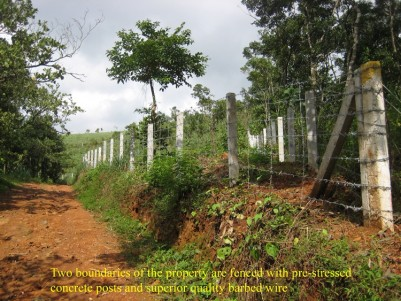 2.2 Acres of House plot for sale at Mananthavady, Wayanad