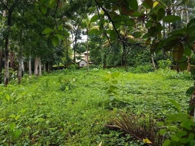 Residential Land for Sale at Kumaranallor, Kottayam