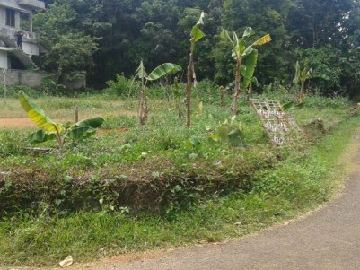 20 Cents of Residential land for sale Near Mookkannoor Junction, Angamaly, Ernakulam
