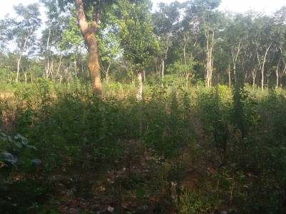 7 Acres of Agricultural land for sale at Meenangady,Wayanad.