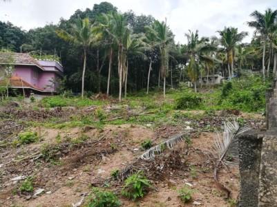 45 Cent  Residential Land for Sale at Near Vizhinjam, - Pallichal,Peringammala,Trivandrum