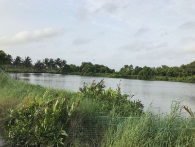 2.2 Acre Wetland for Sale at Thripunithara Thekkumbhagam, Ernakulam.
