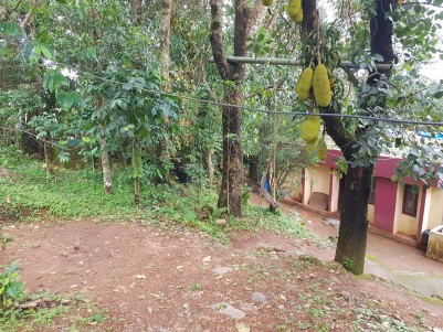 Residential Lands for sale at  Peerumedu,Idukki