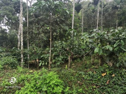 4.21 Acres of Residential Land for Sale at Thalakkal, Wayanad