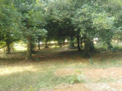 23 Cent Residential Land For Sale At Aimury,Perumbavoor.