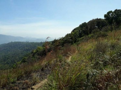 2 Acres of Land for Sale at Poopara, Idukki.