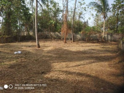 Residential Lands For Sale at Mannuthy, Thrissur.
