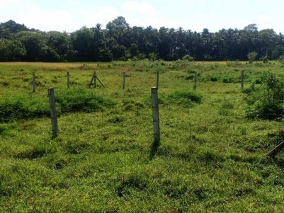 6 Cents of Residential Plot for Sale at Palakkad