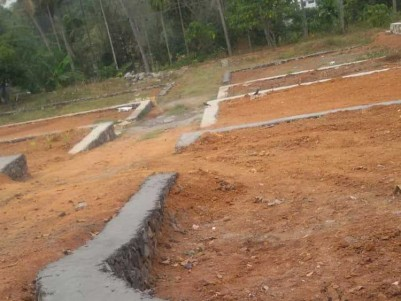 40 Cents of Residential Land for Sale at Pukkattupady, Ernakulam (Villa Plot)