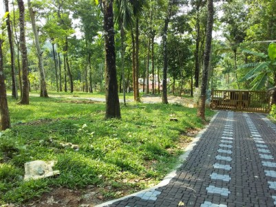 10 Cents House Plots for Sale at Kenichira, Wayanad