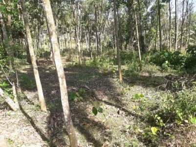 32 Cent Residential Land for Sale at Kuravilangad, Kottayam.