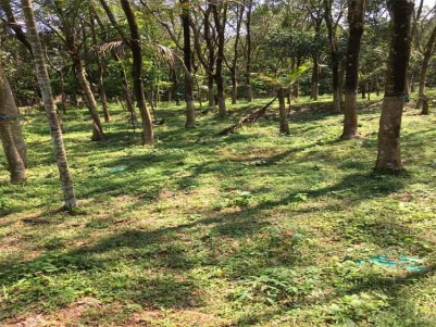 Prime Residential Land for Sale at Thiruvalla, Pathanamthitta.