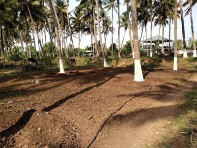 4.6 Acre Coconut Farm for Sale at Kozhinjampara, Chittur, Palakkad