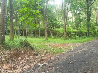 52 Cents of Residential Land ( Grown up Rubber) for Sale near Valakom, Muvattupuzha.