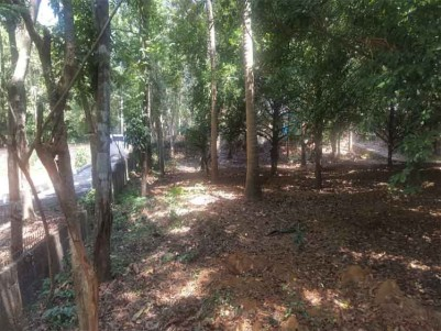 Residential Land for Sale at Elavoor.