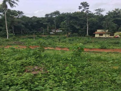2 Acres of Land for Sale at Poomkavu, Vallicode, Pathanamthitta