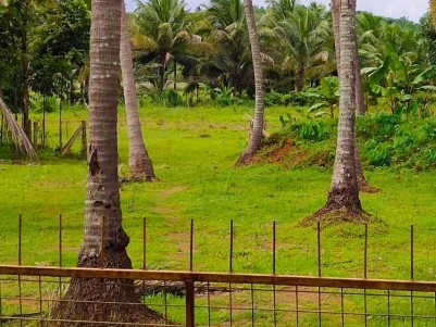 1.8 Acre House plot for Sale at kozhukully, Thrissur