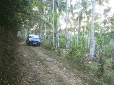 Farm House Plots for Sale at Irukanni, Near Kenichira, Wayanad