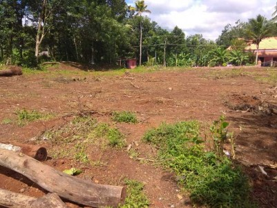 60 Cent Square plot for Sale at Kaduthuruthy, Kottayam