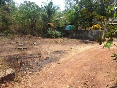 6 Cent Residential Land for Sale at Mamala, Ernakulam