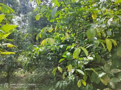 Land Suitable for Residential/Resort Construction for Sale Near Ramakkalmedu, Idukki.