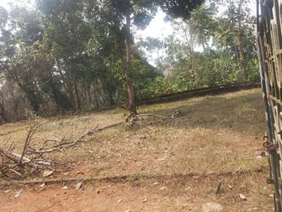 34 Cent Square Residential Land for sale at Chungam - Kumaranelloor road, Kottayam