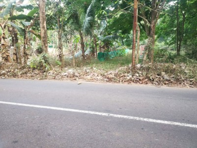 42 Cents of Residential land for sale at Karoor - Pala - Kottayam