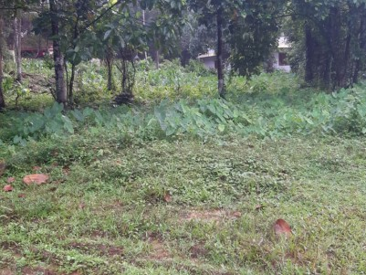45 Cents of Residential land for sale at Pala, Kottayam
