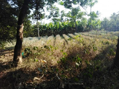 7 Acres of land for sale at Pulluvazhy, Ernakulam