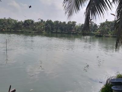 8.5 Acre Fish farm for sale at Vaikom, Kottayam
