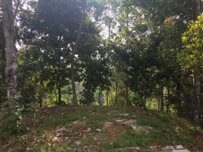 Land For Sale in Munnar